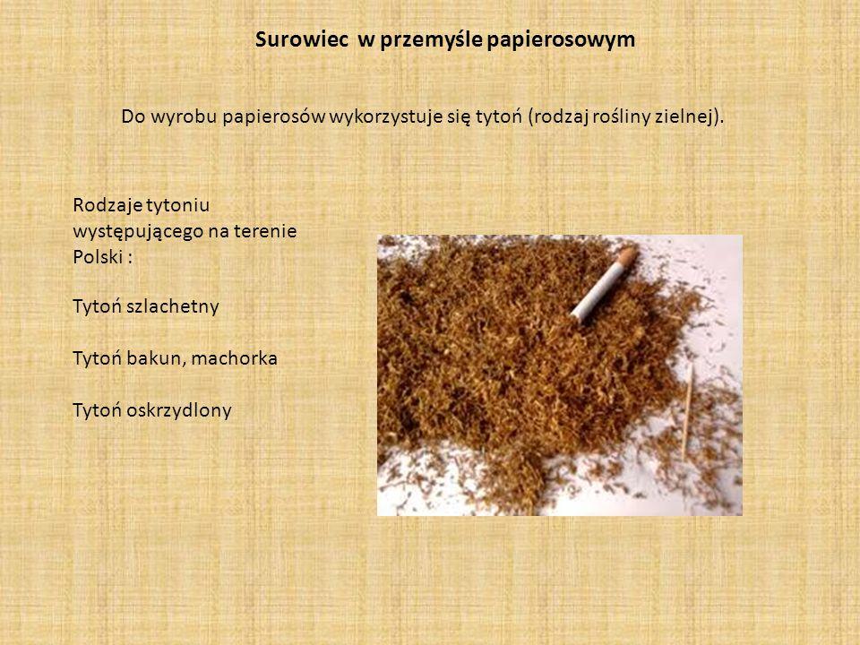 Surowiec w przemyśle papierosowym Do wyrobu papierosów wykorzystuje się tytoń (rodzaj rośliny zielnej). Tytoń szlachetny Tytoń bakun, machorka Tytoń o