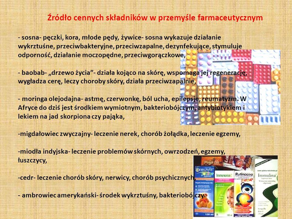 Źródło cennych składników w przemyśle farmaceutycznym - sosna- pęczki, kora, młode pędy, żywice- sosna wykazuje działanie wykrztuśne, przeciwbakteryjn