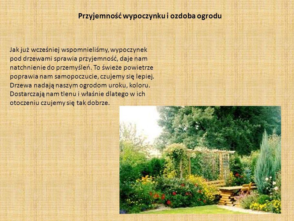 Przyjemność wypoczynku i ozdoba ogrodu Jak już wcześniej wspomnieliśmy, wypoczynek pod drzewami sprawia przyjemność, daje nam natchnienie do przemyśle