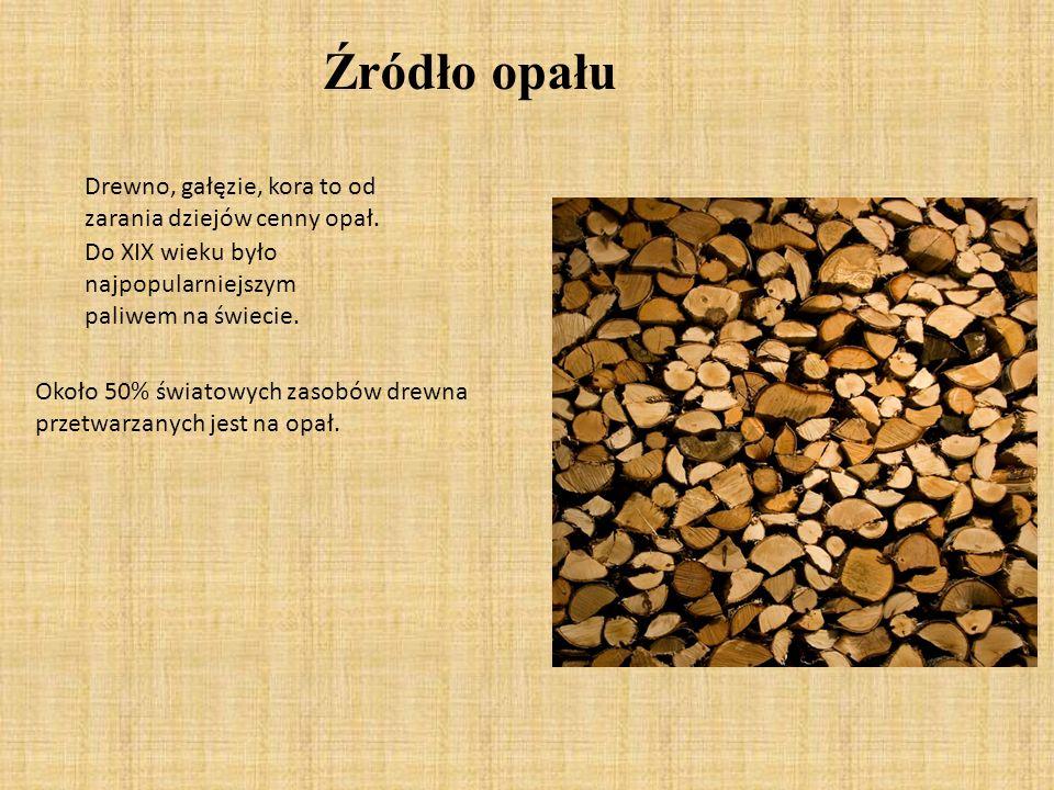 Drewno, gałęzie, kora to od zarania dziejów cenny opał. Do XIX wieku było najpopularniejszym paliwem na świecie. Około 50% światowych zasobów drewna p