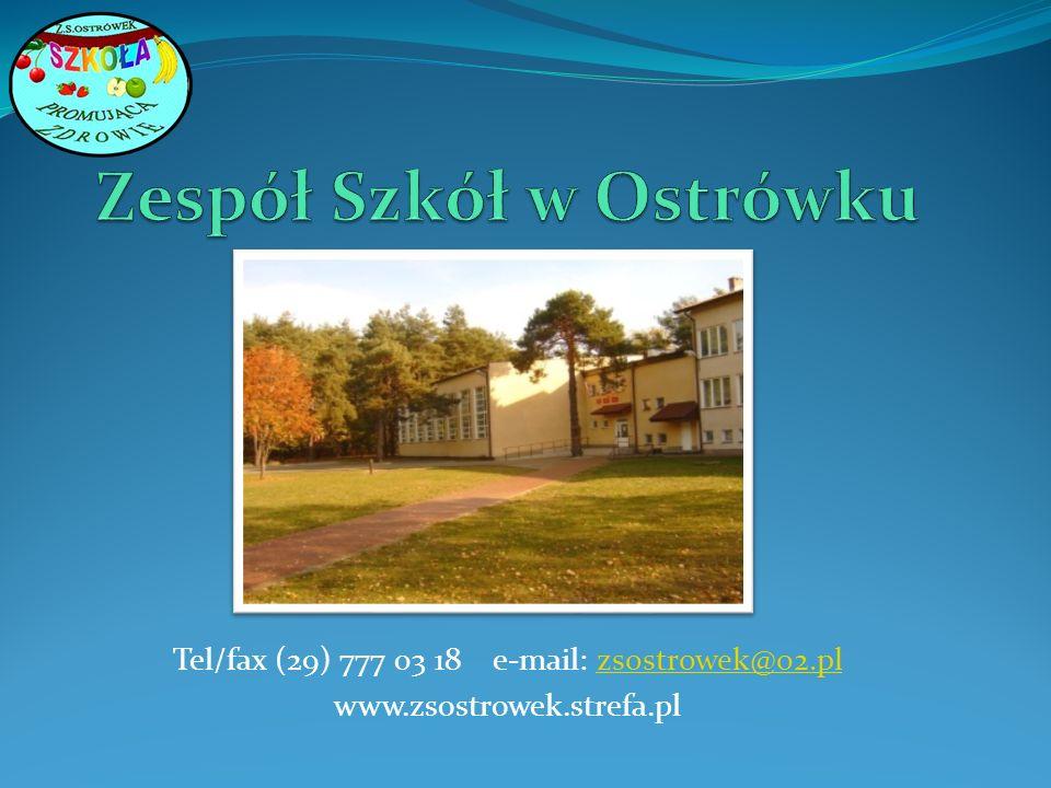 Tel/fax (29) 777 03 18 e-mail: zsostrowek@o2.plzsostrowek@o2.pl www.zsostrowek.strefa.pl