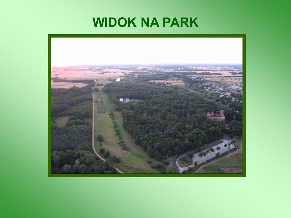 WIDOK NA PARK