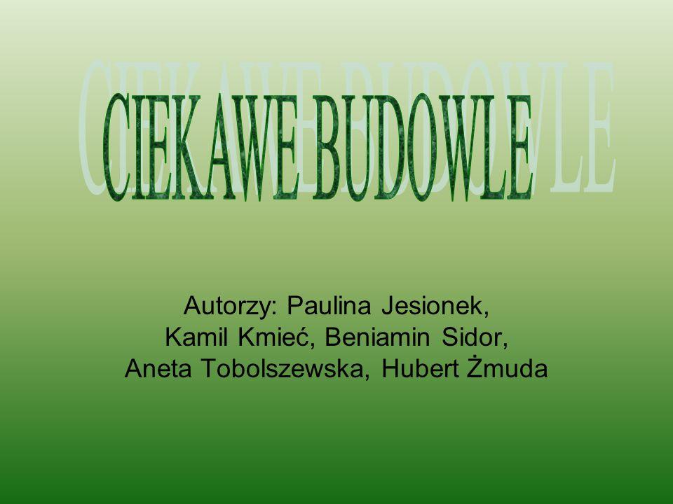 Autorzy: Paulina Jesionek, Kamil Kmieć, Beniamin Sidor, Aneta Tobolszewska, Hubert Żmuda