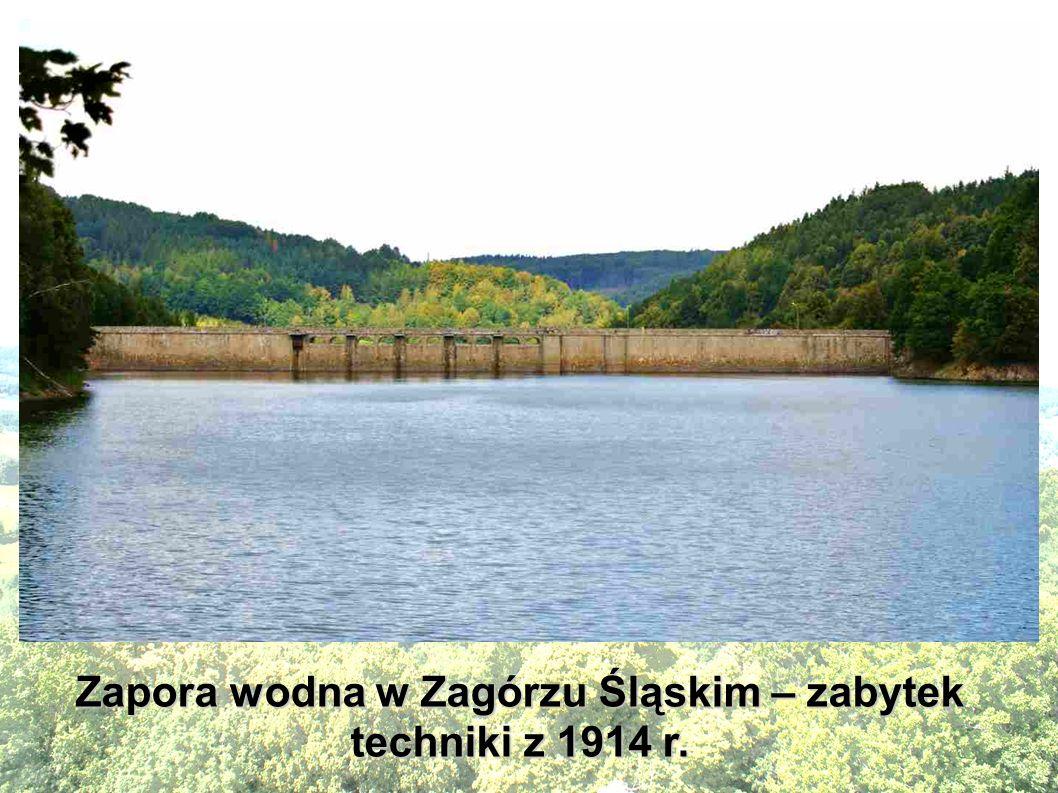 Widok na jezioro Bystrzyckie w Zagórzu Śląskim