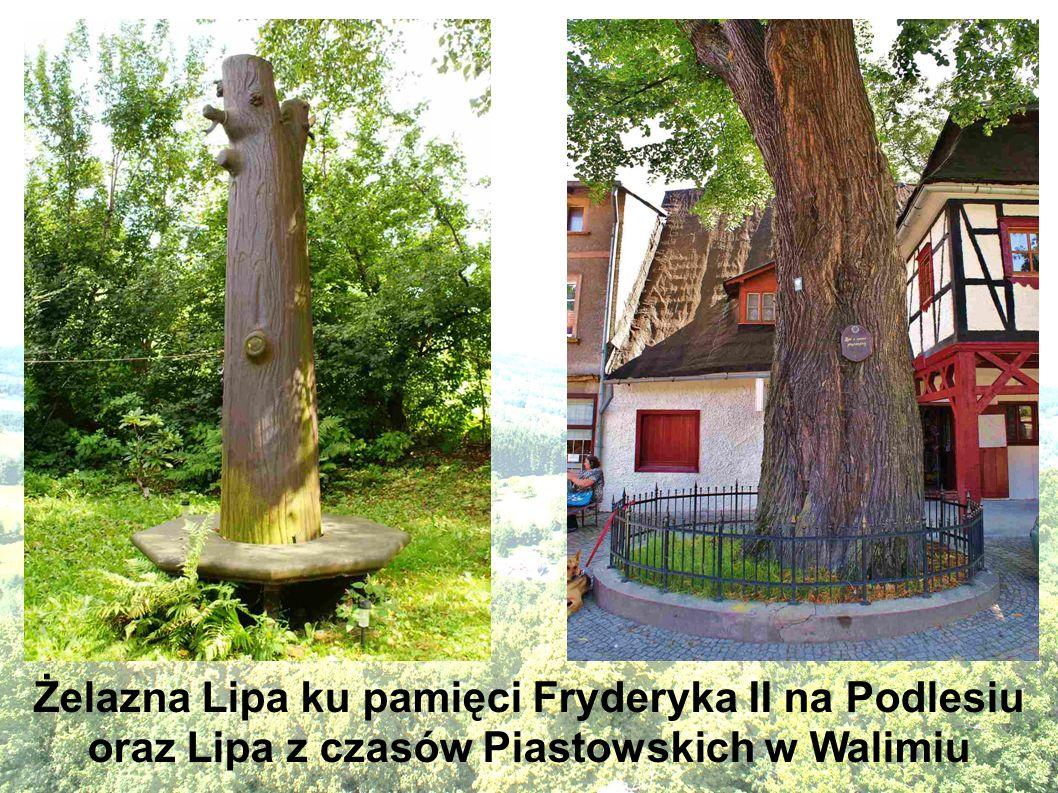 Zabytkowa późnobarokowa kamieniczka z XVIIIw., przebudowana w XXw. w Walimiu