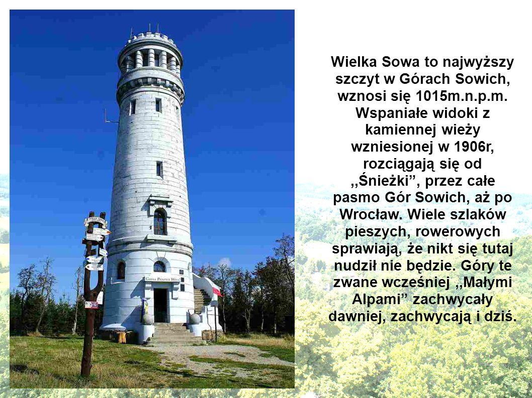 Wielka Sowa to najwyższy szczyt w Górach Sowich, wznosi się 1015m.n.p.m. Wspaniałe widoki z kamiennej wieży wzniesionej w 1906r, rozciągają się od,,Śn