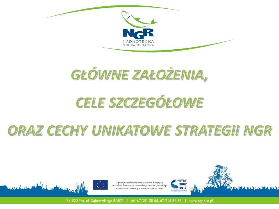 Rozwój obszaru działania Nadnoteckiej Grupy Rybackiej poprzez wsparcie działalności około-rybackiej i gospodarczej oraz budowę zaplecza społecznego i infrastruktury wokół ekoturystyki, jako stymulatora zrównoważonego rozwoju regionu.