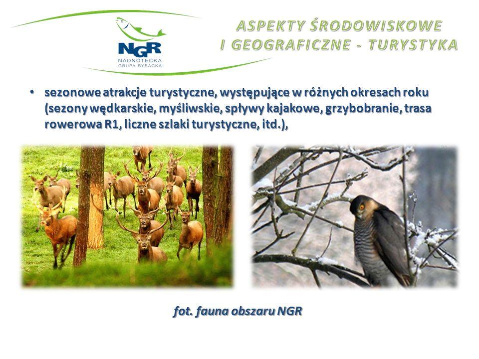 fot. fauna obszaru NGR sezonowe atrakcje turystyczne, występujące w różnych okresach roku (sezony wędkarskie, myśliwskie, spływy kajakowe, grzybobrani