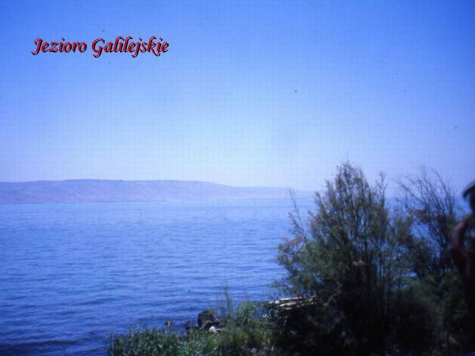 Galilea - kompleks benedyktyński Galilea - kompleks benedyktyński