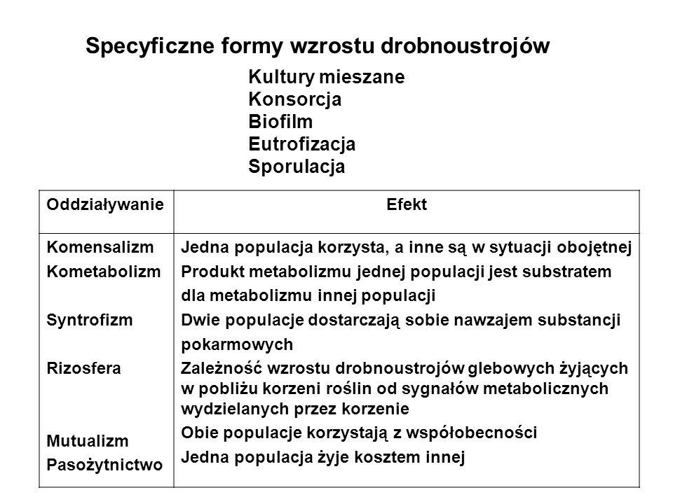 Specyficzne formy wzrostu drobnoustrojów Kultury mieszane Konsorcja Biofilm Eutrofizacja Sporulacja OddziaływanieEfekt Komensalizm Kometabolizm Syntro