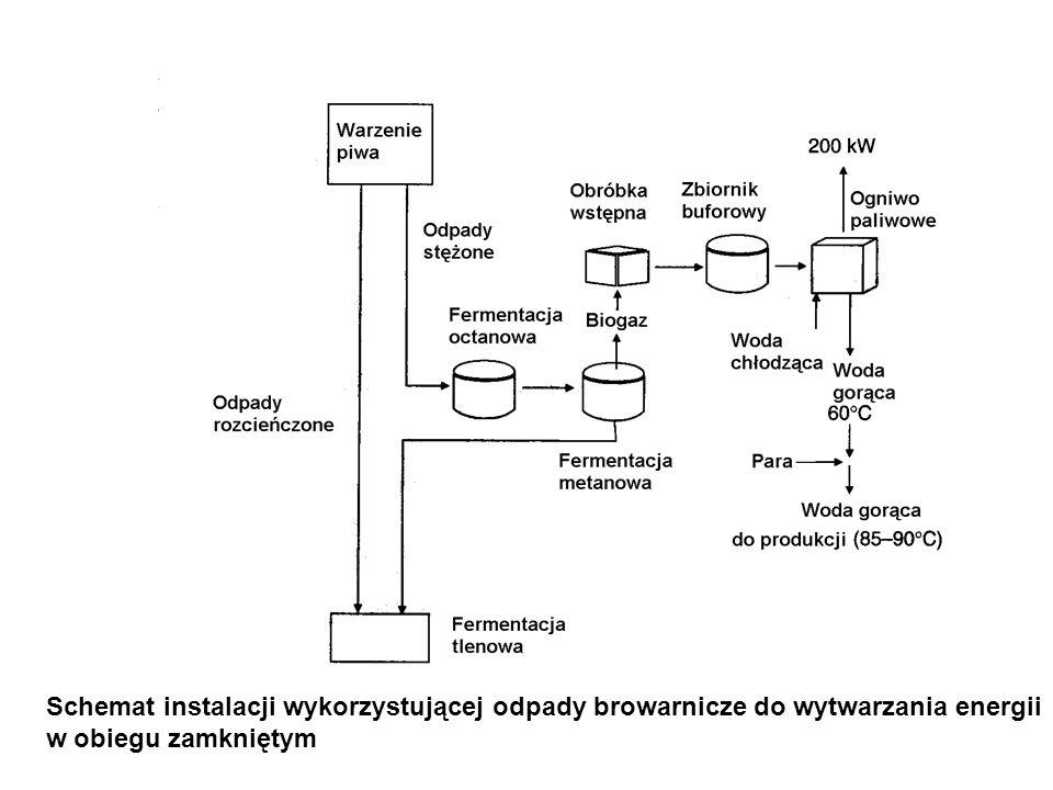 Schemat instalacji wykorzystującej odpady browarnicze do wytwarzania energii w obiegu zamkniętym