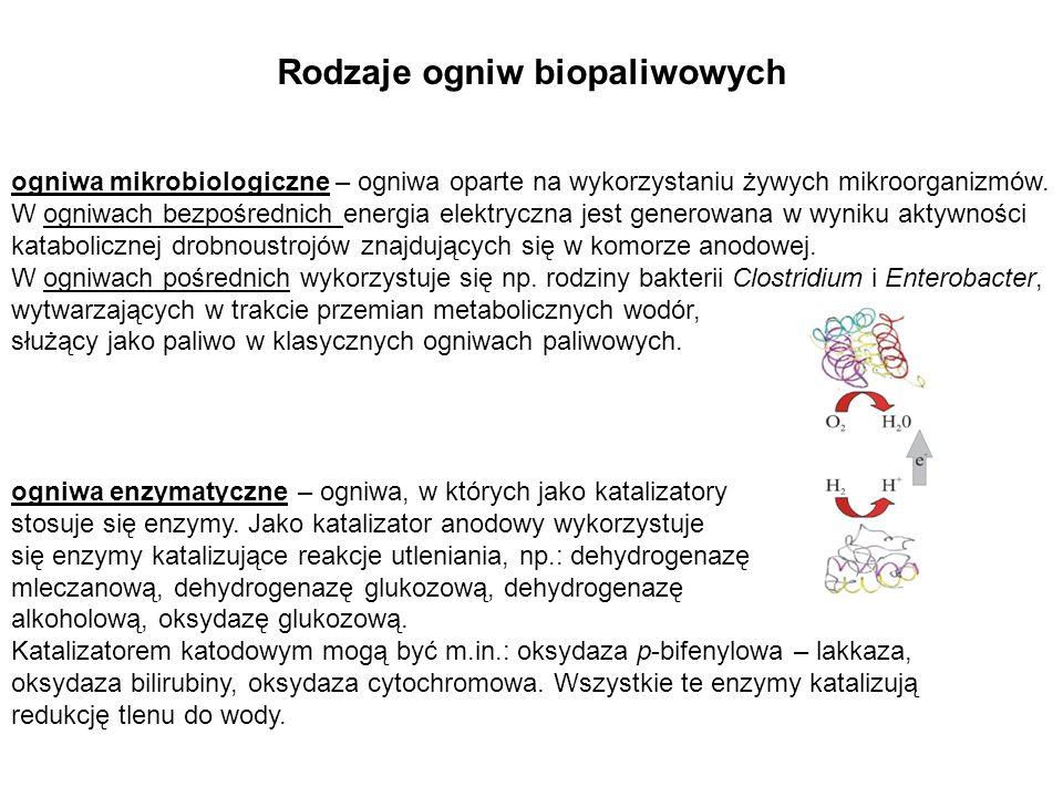 Rodzaje ogniw biopaliwowych ogniwa enzymatyczne – ogniwa, w których jako katalizatory stosuje się enzymy. Jako katalizator anodowy wykorzystuje się en