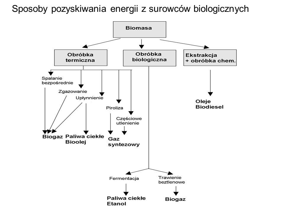 Zawartość energetyczna różnych paliw PaliwoEnergia (GJ/t) Gaz ziemny55 Węgiel28 Benzyna47 Olej napędowy43 Drewno15 Papier17 Gnojowica16 Słoma14 Trzcina cukrowa14 Odpady komunalne 9 Odpady przemysłowe16 Siano 4