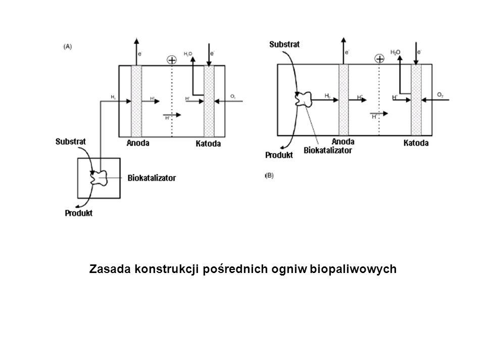 Zasada konstrukcji pośrednich ogniw biopaliwowych