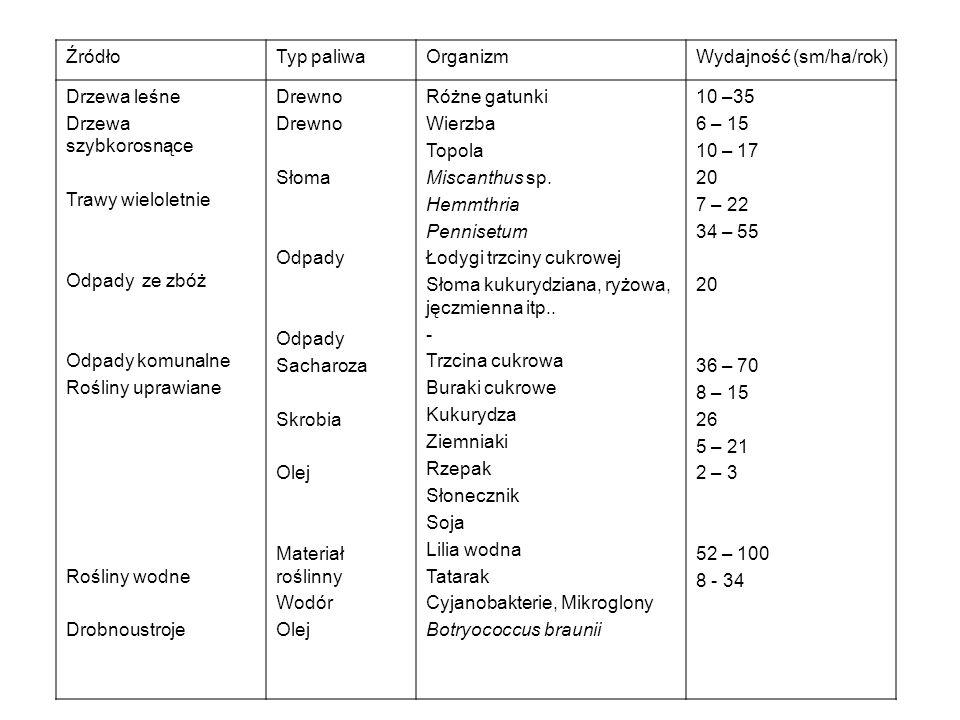 Bakterie znajdujące się w komorze anodowej utleniają glukozę do CO 2.