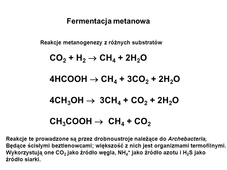 Współzależność bakterii acetogennych i metanowych Fermentacja metanowa