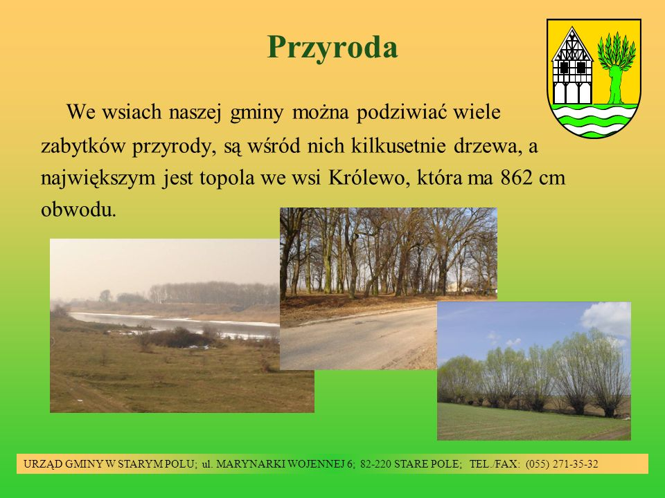 Przyroda URZĄD GMINY W STARYM POLU; ul. MARYNARKI WOJENNEJ 6; 82-220 STARE POLE; TEL./FAX: (055) 271-35-32 We wsiach naszej gminy można podziwiać wiel