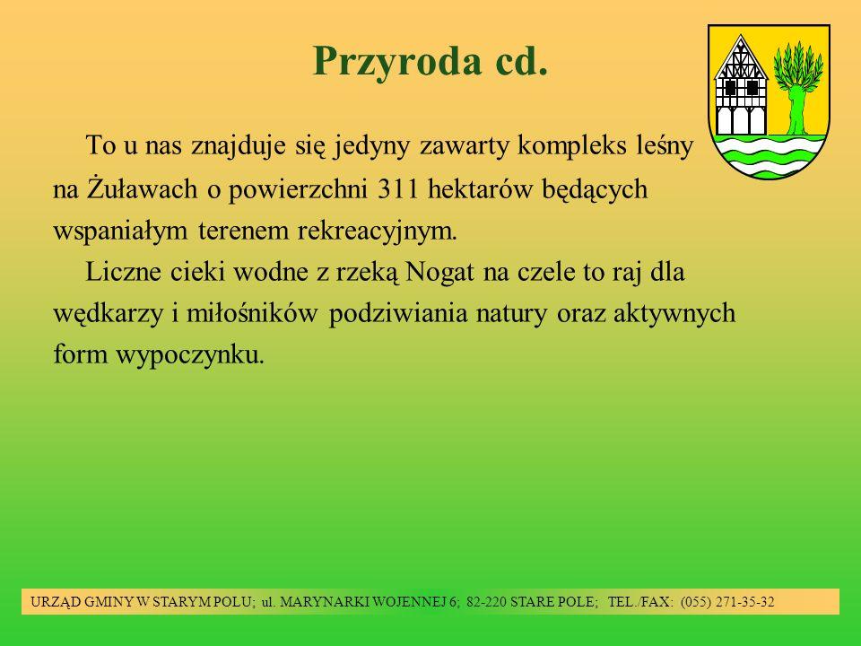 Przyroda cd.URZĄD GMINY W STARYM POLU; ul.