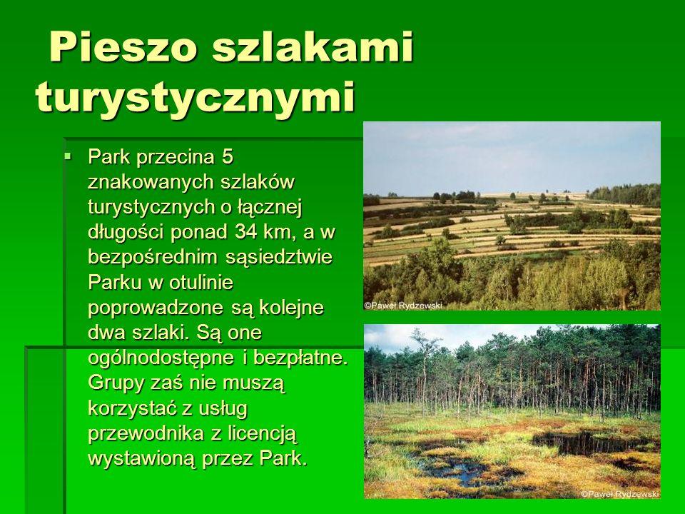 Pieszo szlakami turystycznymi Pieszo szlakami turystycznymi Park przecina 5 znakowanych szlaków turystycznych o łącznej długości ponad 34 km, a w bezp