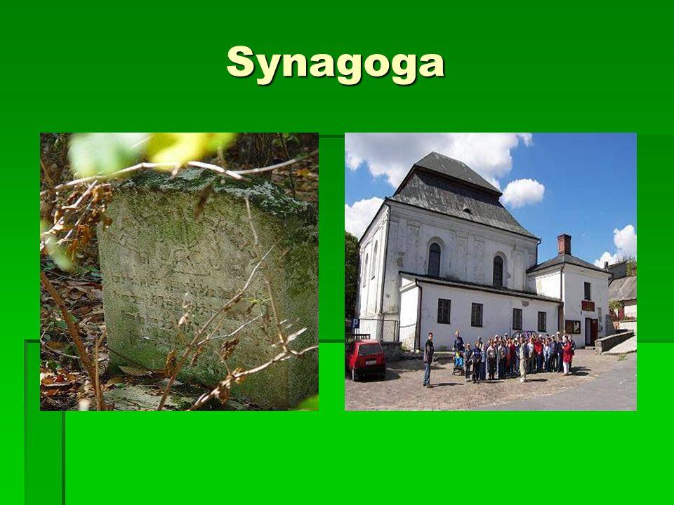 Synagoga Synagoga