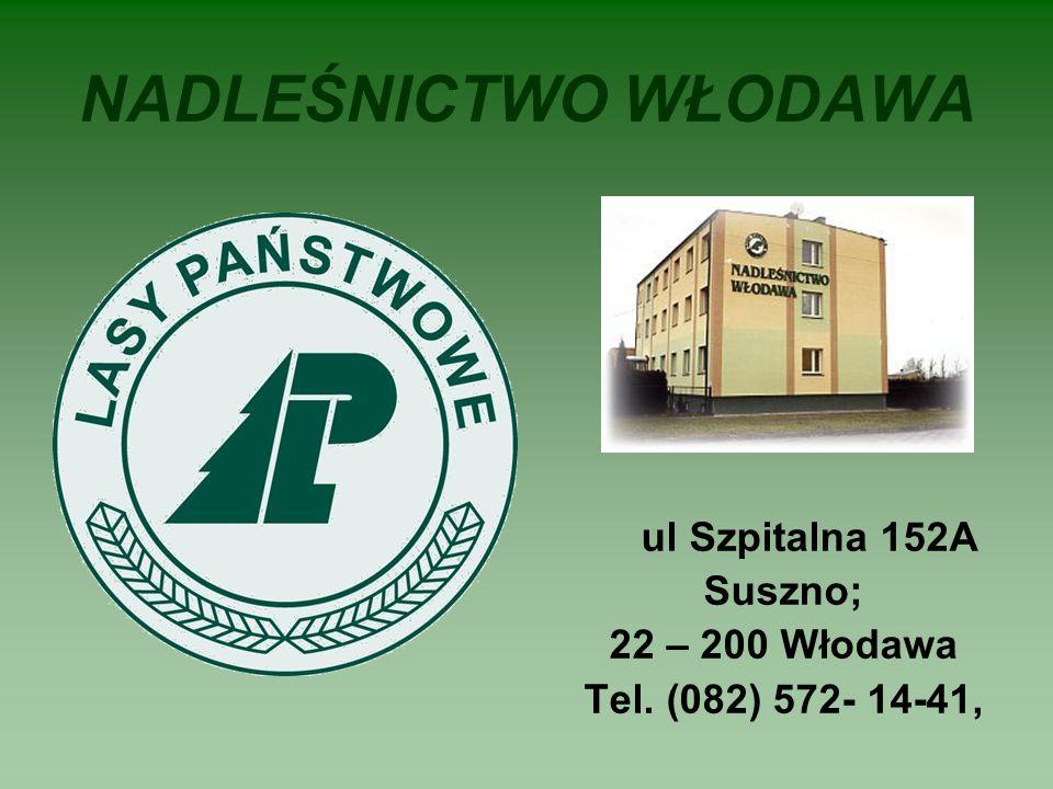 NADLEŚNICTWO WŁODAWA ul Szpitalna 152A Suszno; 22 – 200 Włodawa Tel. (082) 572- 14-41,