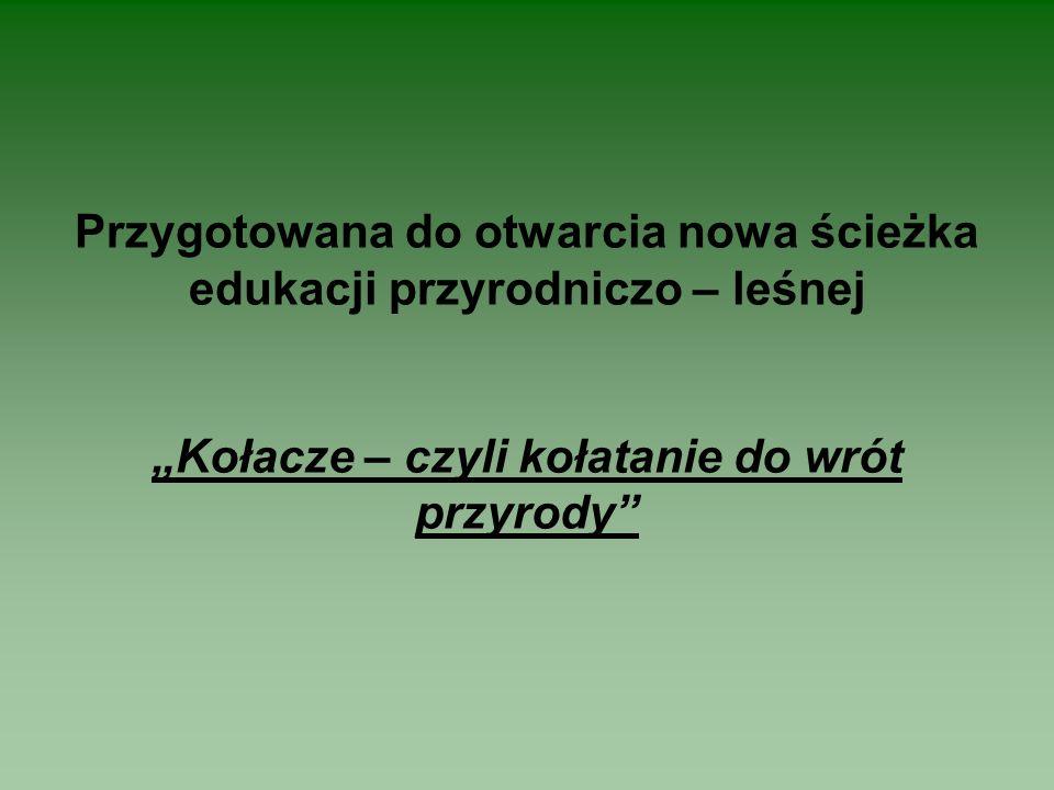 Idąc naprzeciw zapotrzebowaniu społeczeństwa Nadleśnictwo Włodawa przygotowało do otwarcia w maju 2008 r.