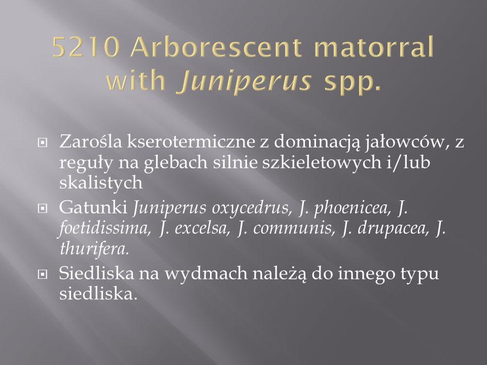 Zarośla kserotermiczne z dominacją jałowców, z reguły na glebach silnie szkieletowych i/lub skalistych Gatunki Juniperus oxycedrus, J. phoenicea, J. f