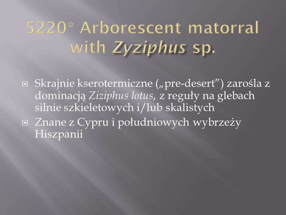 Skrajnie kserotermiczne (pre-desert) zarośla z dominacją Ziziphus lotus, z reguły na glebach silnie szkieletowych i/lub skalistych Znane z Cypru i poł