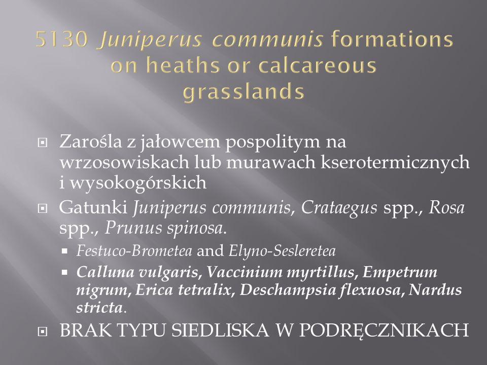 Zarośla z jałowcem pospolitym na wrzosowiskach lub murawach kserotermicznych i wysokogórskich Gatunki Juniperus communis, Crataegus spp., Rosa spp., P