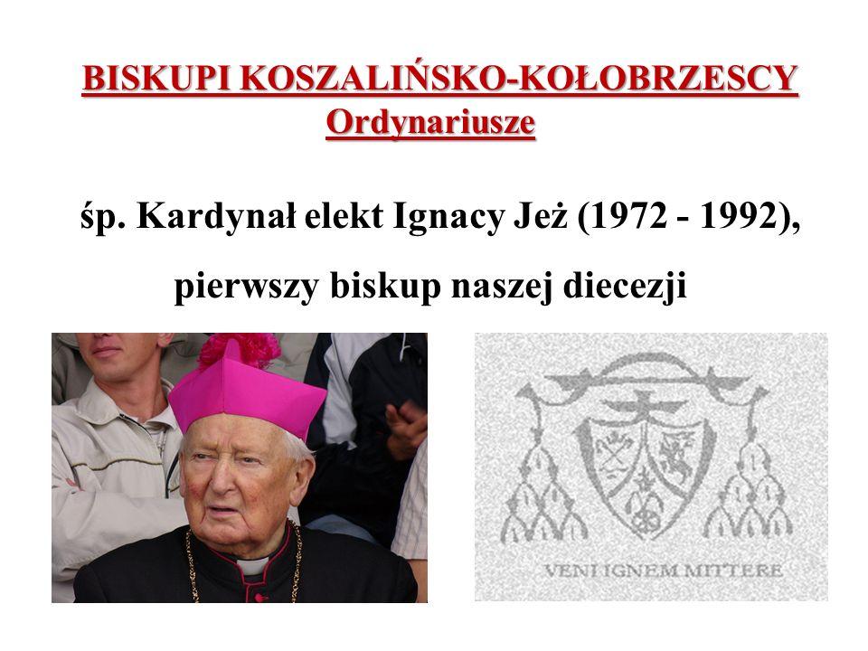 BISKUPI KOSZALIŃSKO-KOŁOBRZESCY Ordynariusze śp. Kardynał elekt Ignacy Jeż (1972 - 1992), pierwszy biskup naszej diecezji