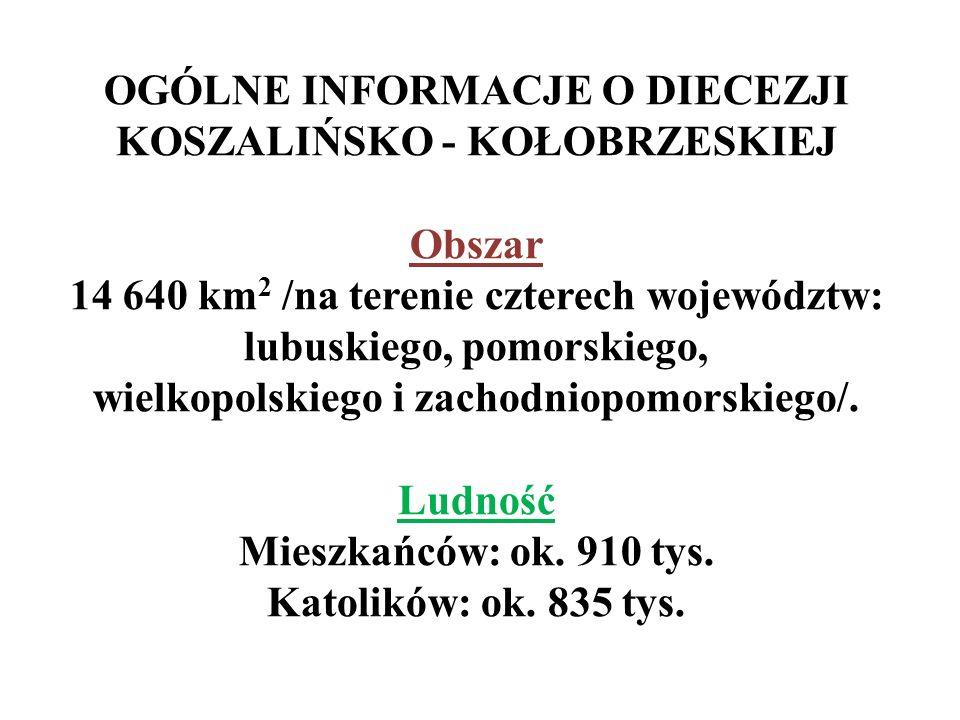 MEDIA DIECEZJALNE: Strona internetowa diecezji: http://www.koszalin.opoka.org.pl i www.40latdiecezji.plhttp://www.koszalin.opoka.org.plwww.40latdiecezji.pl Gość Niedzielny - tygodnik katolicki z wkładką diecezjalną http://www.goscniedzielny.pl/redakcja.php http://www.goscniedzielny.pl/redakcja.php Barka - magazyn katolicki; niedziela, godz.