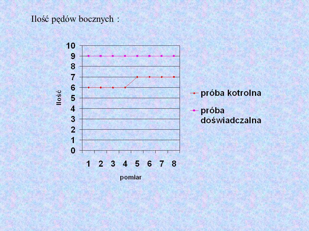 Długość pędów bocznych :