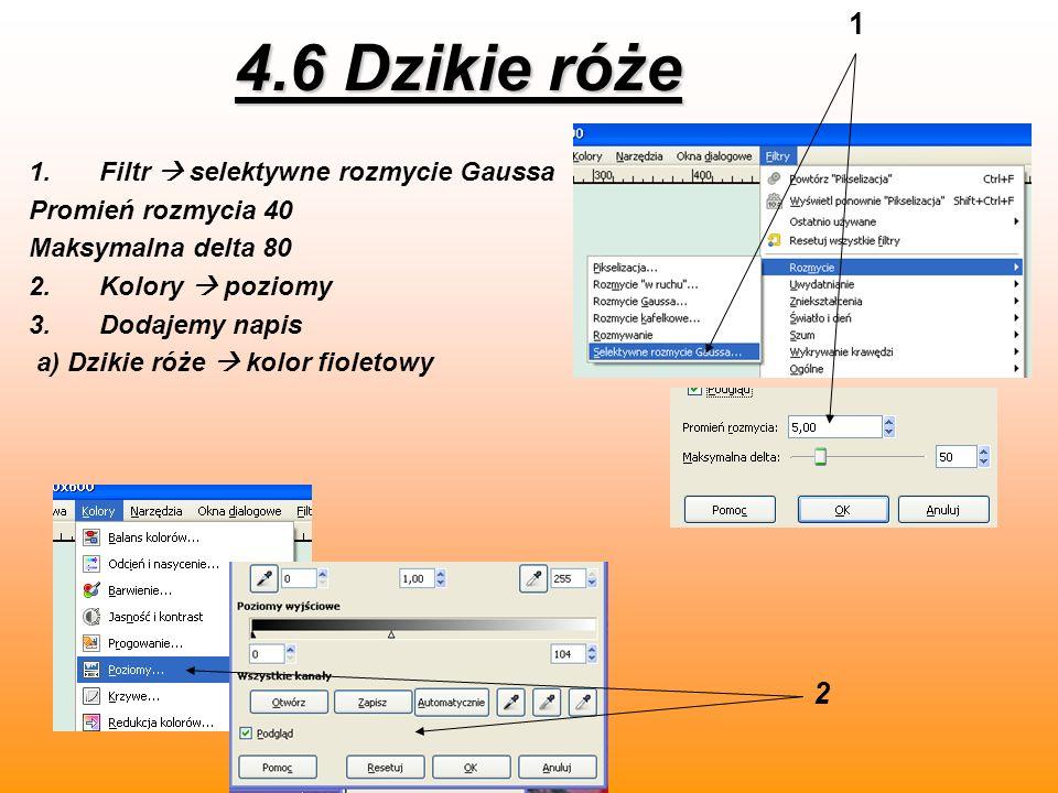 4.6 Dzikie róże 1.Filtr selektywne rozmycie Gaussa Promień rozmycia 40 Maksymalna delta 80 2.Kolory poziomy 3.Dodajemy napis a) Dzikie róże kolor fiol