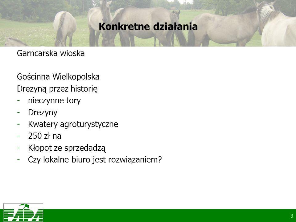3 Konkretne działania Garncarska wioska Gościnna Wielkopolska Drezyną przez historię -nieczynne tory -Drezyny -Kwatery agroturystyczne -250 zł na -Kłopot ze sprzedadzą -Czy lokalne biuro jest rozwiązaniem