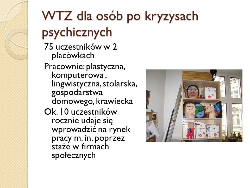 WTZ dla osób po kryzysach psychicznych 75 uczestników w 2 placówkach Pracownie: plastyczna, komputerowa, lingwistyczna, stolarska, gospodarstwa domowe