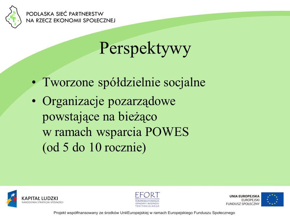 Perspektywy Tworzone spółdzielnie socjalne Organizacje pozarządowe powstające na bieżąco w ramach wsparcia POWES (od 5 do 10 rocznie)