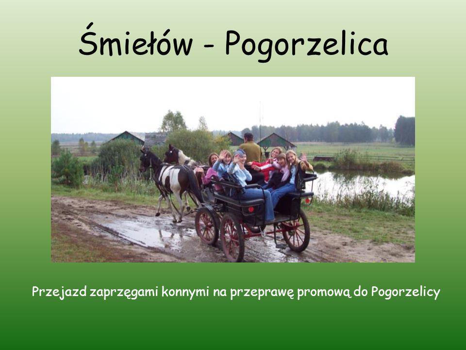 Śmiełów - Pogorzelica Przejazd zaprzęgami konnymi na przeprawę promową do Pogorzelicy