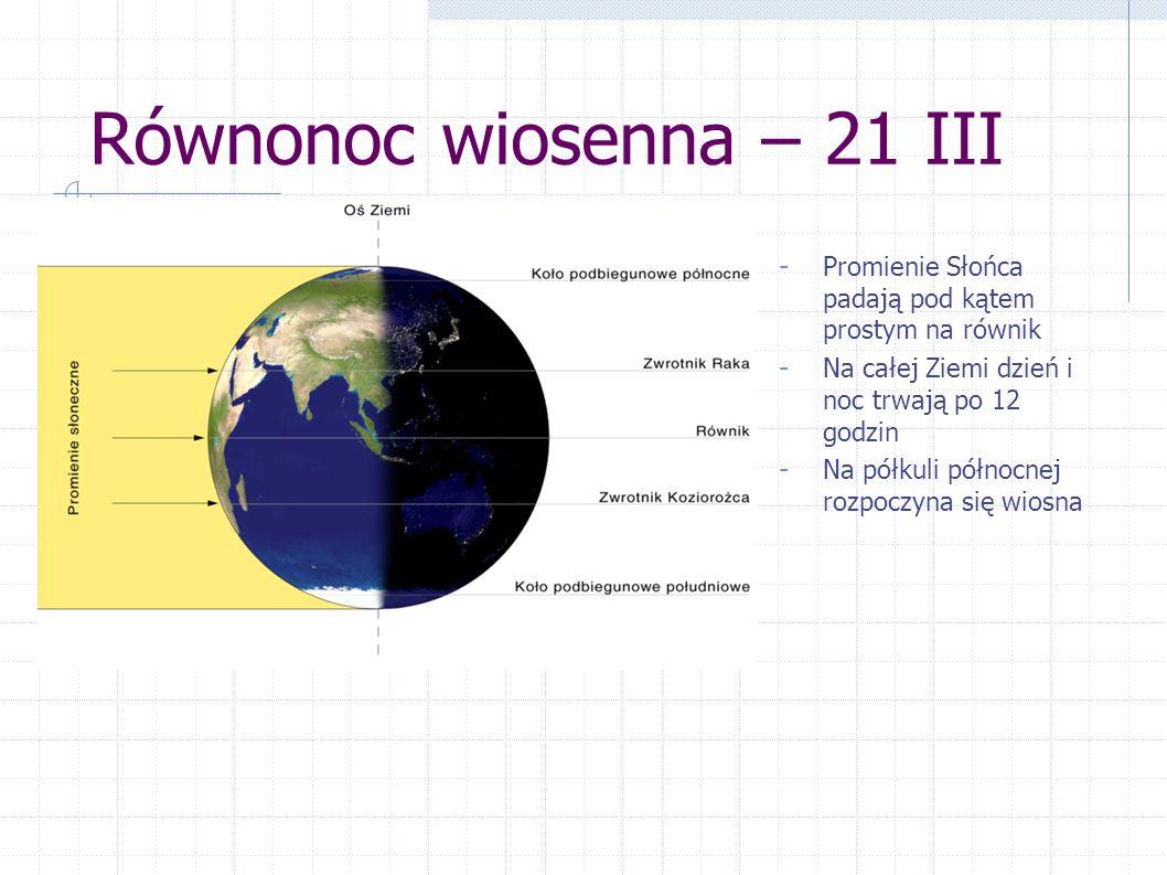 Równonoc wiosenna – 21 III - Promienie Słońca padają pod kątem prostym na równik - Na całej Ziemi dzień i noc trwają po 12 godzin - Na półkuli północn