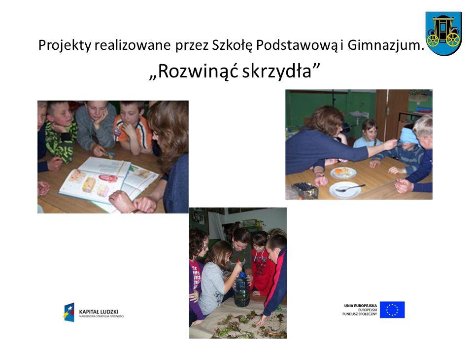 Projekty realizowane przez Szkołę Podstawową i Gimnazjum. Rozwinąć skrzydła