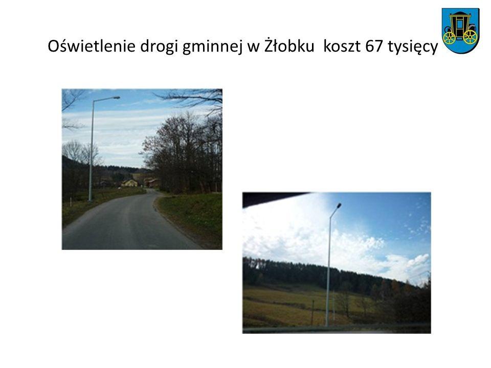 Oświetlenie drogi gminnej w Żłobku koszt 67 tysięcy