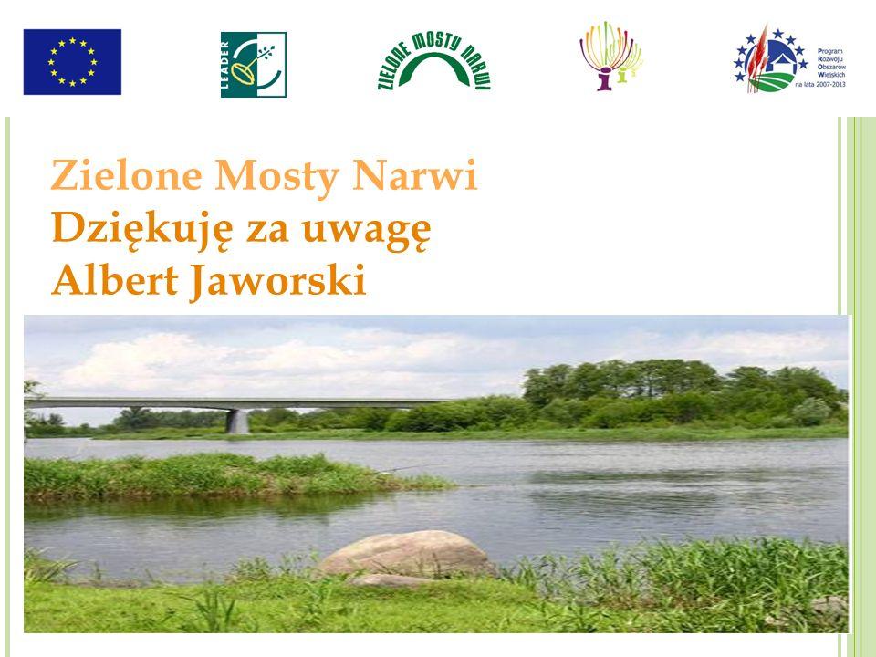 Zielone Mosty Narwi Dziękuję za uwagę Albert Jaworski