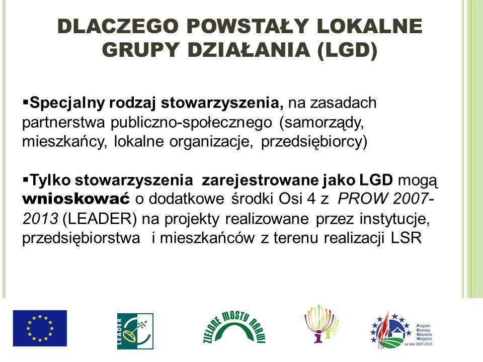 Specjalny rodzaj stowarzyszenia, na zasadach partnerstwa publiczno-społecznego (samorządy, mieszkańcy, lokalne organizacje, przedsiębiorcy) Tylko stow
