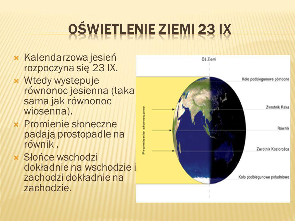 Kalendarzowa jesień rozpoczyna się 23 IX. Wtedy występuje równonoc jesienna (taka sama jak równonoc wiosenna). Promienie słoneczne padają prostopadle