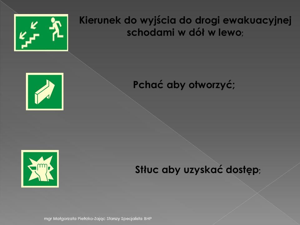 Kierunek do wyjścia do drogi ewakuacyjnej schodami w dół w lewo ; Pchać aby otworzyć; Stłuc aby uzyskać dostęp ; mgr Małgorzata Pietrzko-Zając Starszy