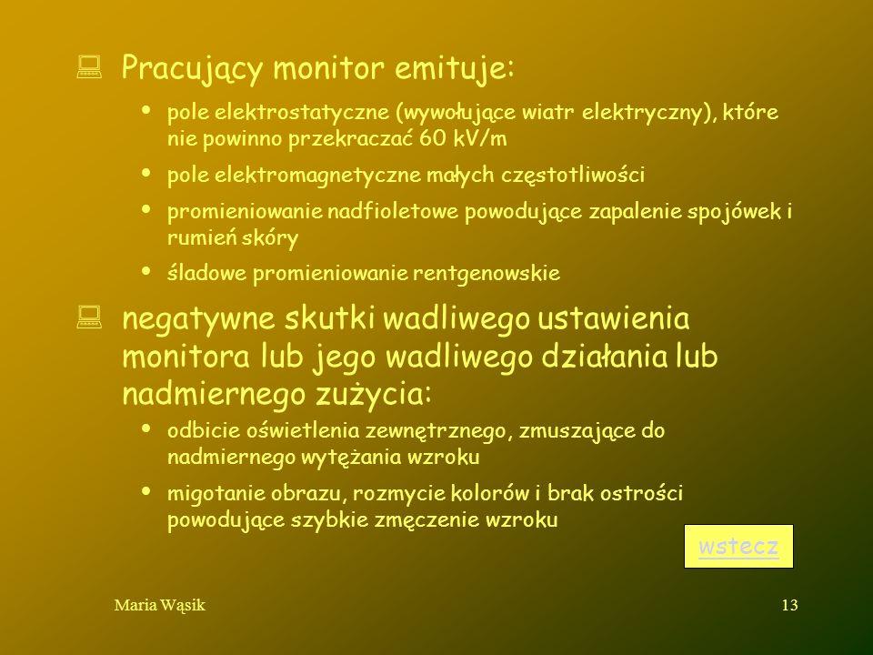 Maria Wąsik13 Pracujący monitor emituje: pole elektrostatyczne (wywołujące wiatr elektryczny), które nie powinno przekraczać 60 kV/m pole elektromagne