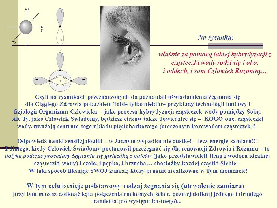Na rysunku: właśnie za pomocą takiej hybrydyzacji z cząsteczki wody rodzi się i oko, i oddech, i sam Człowiek Rozumny... Czyli na rysunkach przeznaczo