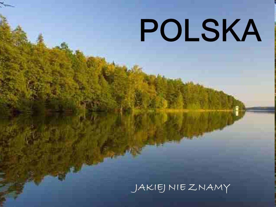 Kilka słów o naszej Ojczyźnie… Polska, inaczej Rzeczpospolita Polska, to państwo położone w Europie Środkowej, między Bałtykiem na północy a Karpatami i Sudetami na południu w dorzeczu Wisły i Odry.