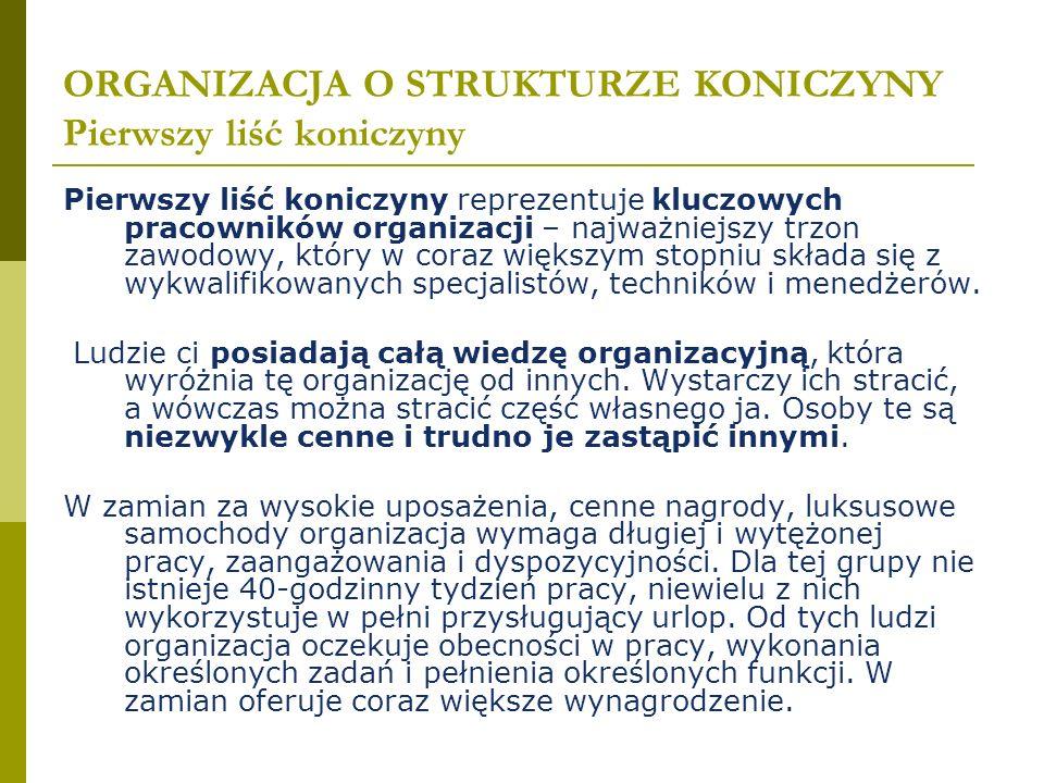ORGANIZACJA O STRUKTURZE KONICZYNY Pierwszy liść koniczyny Pierwszy liść koniczyny reprezentuje kluczowych pracowników organizacji – najważniejszy trz