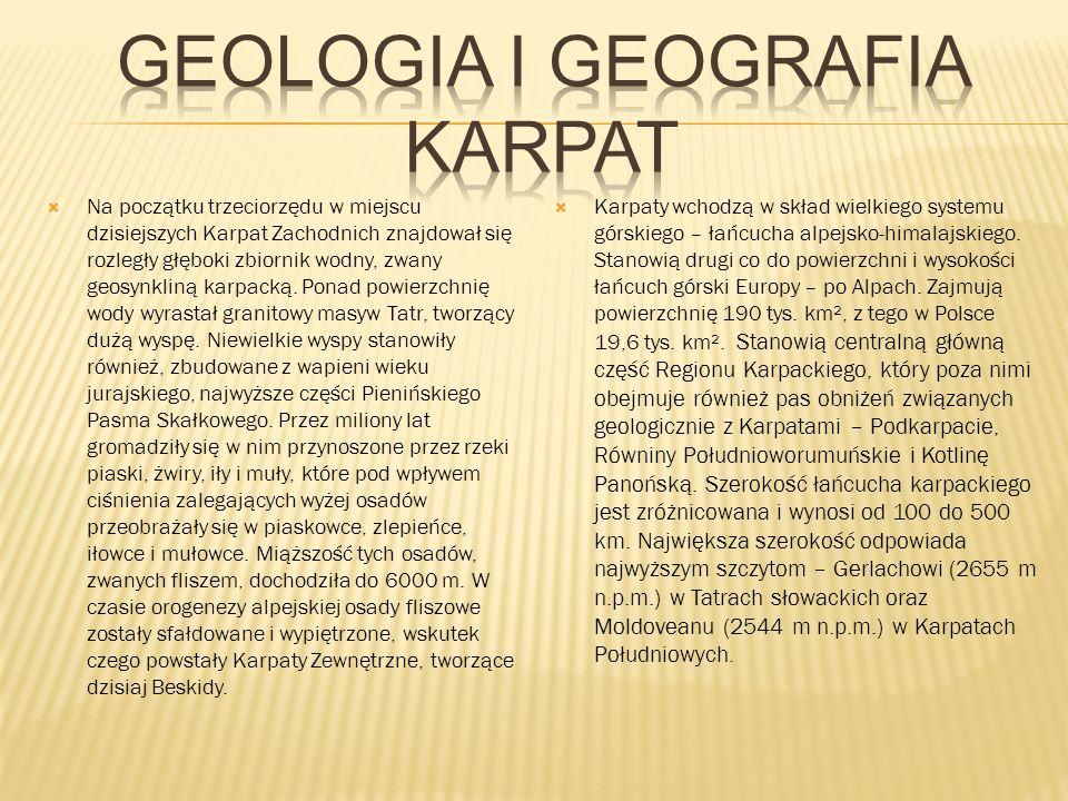 Na początku trzeciorzędu w miejscu dzisiejszych Karpat Zachodnich znajdował się rozległy głęboki zbiornik wodny, zwany geosynkliną karpacką.