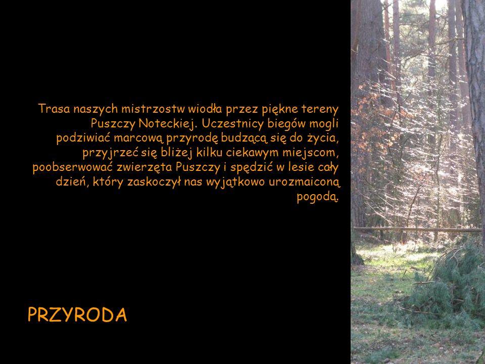 Trasa naszych mistrzostw wiodła przez piękne tereny Puszczy Noteckiej. Uczestnicy biegów mogli podziwiać marcową przyrodę budzącą się do życia, przyjr